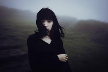 In the Fog by zhangahuei