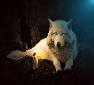 Big Wolf by L0RDCX