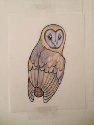 Ashy faced owl by chennanigan