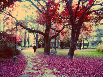 Autumn story by TurquoiseGrrrl