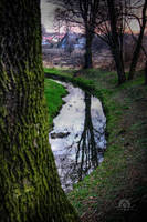 little.river by lechistani