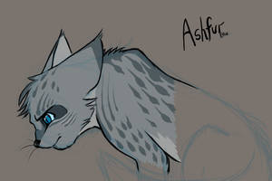 Upset Ashfur by Yolly-anda
