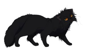 WCC- Yellowfang by Yolly-anda