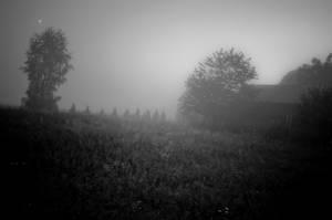 Mysterious mist by vertiser