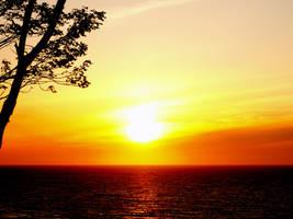 Sunset on Baltic shore by vertiser