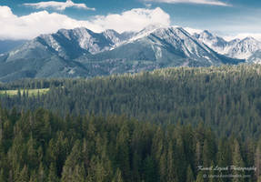 Morning mountains by vertiser