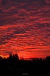 Fiery sky by vertiser