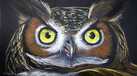 Hoot Owl by HouseofChabrier