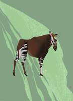 Okapi by ayanimeya