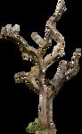 Dead Tree 04 by gd08