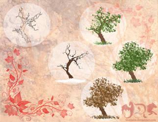 Seasons by Deexalis