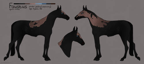 Faustus reference sheet by marnah