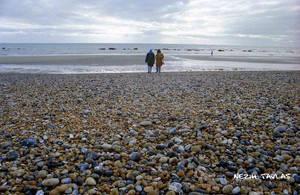 Brighton's Pebbles by NezihTavlas