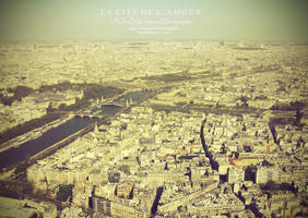 Paris, La cite de L'amour by aninyosaloh