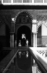 Reflections by aninyosaloh