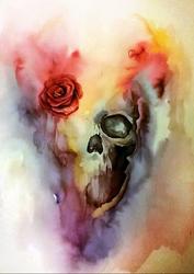 skull by Andrzej-Korytkowski