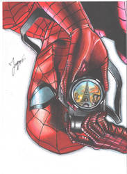 Spidey Take Picture by tontentotza