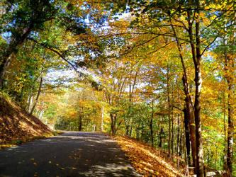 Autumn Road (edited....sort of) by ChokieMoki47