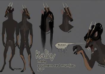 Kaliq Ref by barish-ki-boond