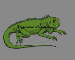 Iguana by rigganmore