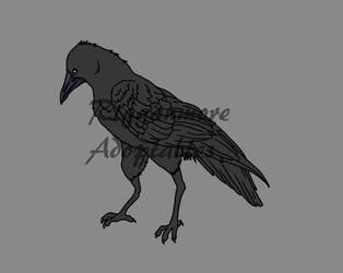 Raven by rigganmore