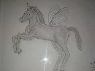 unicorn by no01baby