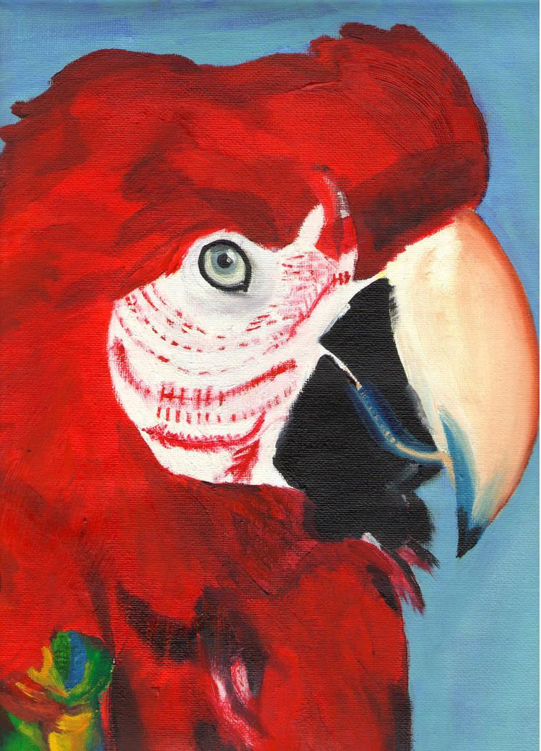 Parrot by Geoffryn
