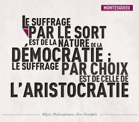 Citation Montesquieu by Hydronium-GV