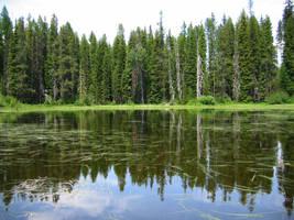 Pond 3 by pricecw-stock