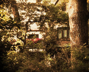 House In The Woods by foolishbunny
