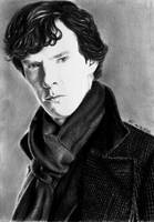 My name is Sherlock Holmes by Miss-Catherine
