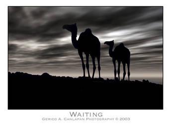 Waiting by jerishoots