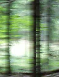 light hide out by skogsanda