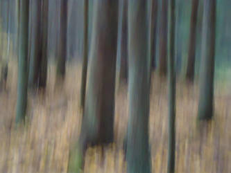 Dream away by skogsanda