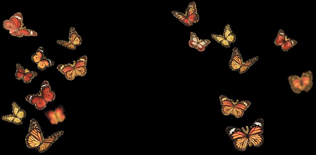 Butterflies_by GalinaV by GalinaV