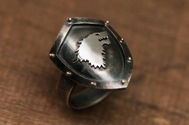 Starks Shield Ring by raulsouza