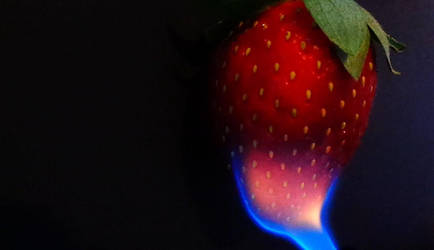 Fire Berry by TheUselessTrainer