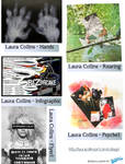 Laura Collins: Graphic Artist Article 2 by PCHILL