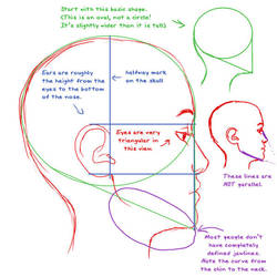 Profile anatomy tutorial by Iyou