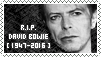 R.I.P. David Bowie by JustYoungHeroes