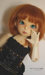 Black-secret Mini 2 by Pandora-BJD
