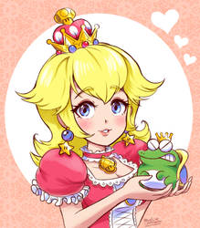 Princess Toadstool and the Evil Frog by Mast3r-Rainb0w