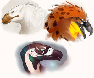 Bird Doodles by GryAdventures
