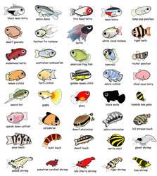 freshwater aquarium members by EvilDarkSide