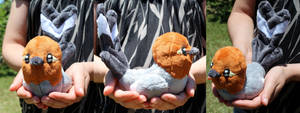 A bird in the hand by Zareidy