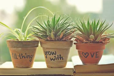 All things grow with love by BigGirlsDoNotCry