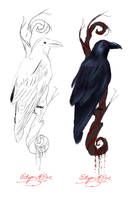 Raven Tattoo Design by KinderCollective