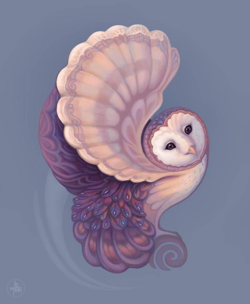 Barn Owl by Yullapa