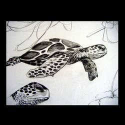 Sea Turtle by Dayana714