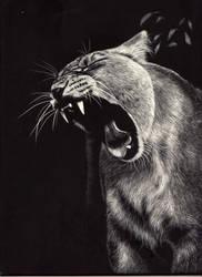 Roar by shonechacko